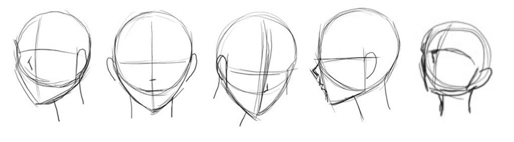 anime-head-shape