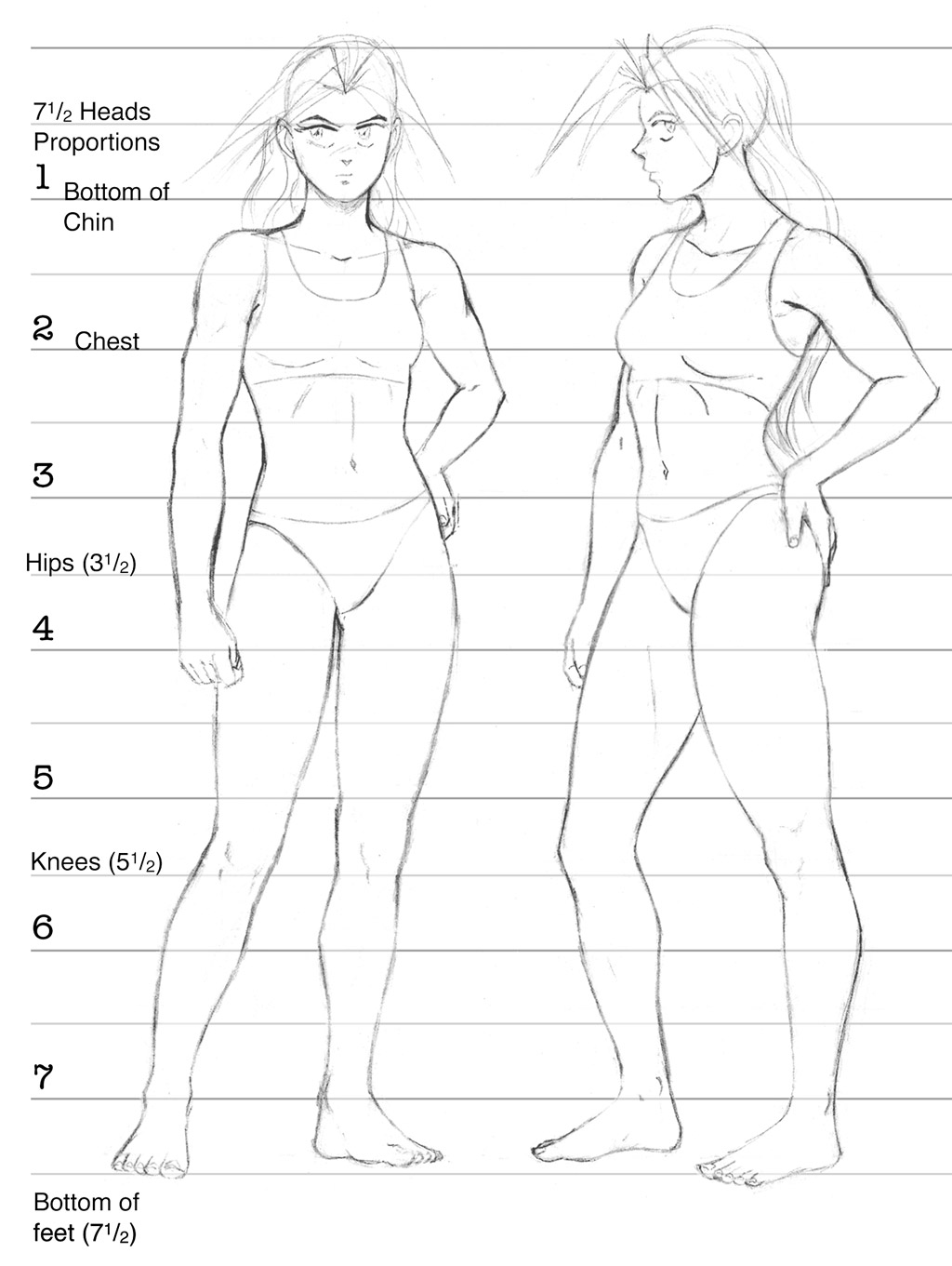 Kate is slightly shorter at 7 1 2 heads which is closer to realistic human proportions the half head is lost around the hips making her torso slightly